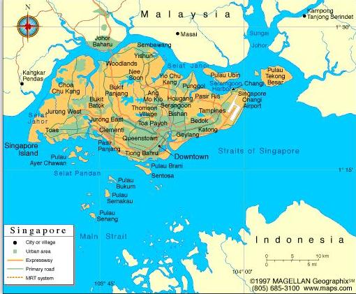 新加坡市场开发